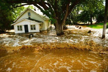 Does homeowners insurance cover mold cover water damage